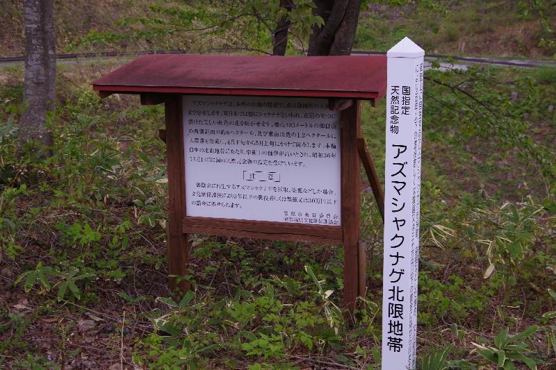 IMGP7814azumasyaku^kanban.jpg